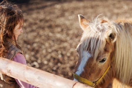 21147569_s - girl with pony